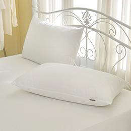 義大利La Belle《經典品味》吸濕排汗抑菌防水信封式保潔枕套--2入