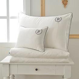 義大利La Belle《爵士典範》加大天絲滾邊刺繡防蹣抗菌吸濕排汗兩用被床包組