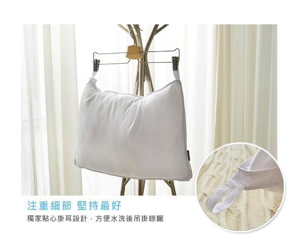 特賣《可水洗》立體車邊抑菌兒童羽絲絨枕 一入(BLP17001FF)
