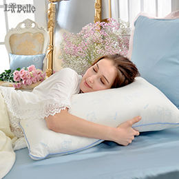 義大利La Belle《日本防蟎抗菌可水洗舒眠羊毛枕》