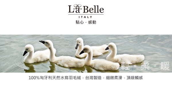 特賣《義大利La Belle》90/10雙人匈牙利立體車邊水鳥羽毛絨暖冬被(BLQ15550AD)